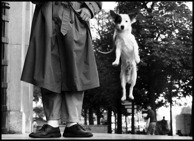 FRANCE. Paris. 1989 © Elliott Erwitt/Magnum Photos