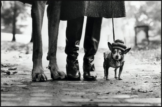 USA. New York. 1974. Felix, Gladys and Rover. © Elliott Erwitt / Magnum Photos